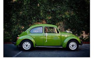 Volkswagen Beetle Rent Bratislava